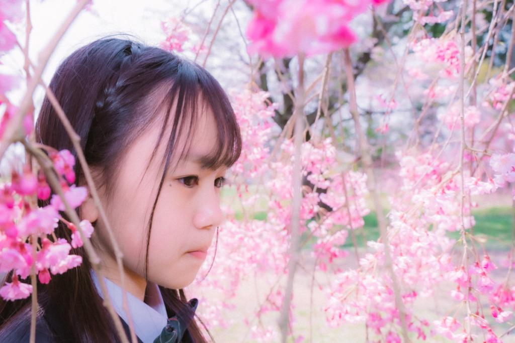 仙台 三神峯公園|入学式での桜ポートレート撮影
